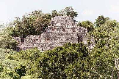 ?Viva Mexico! Collection - Ancient Maya City within the jungle of Calakmul II-Philippe Hugonnard-Photographic Print