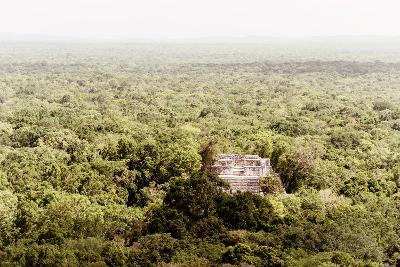 ¡Viva Mexico! Collection - Ancient Maya City within the jungle V - Calakmul-Philippe Hugonnard-Photographic Print