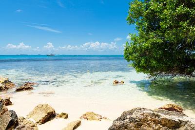 ?Viva Mexico! Collection - Caribbean Coastline - Isla Mujeres-Philippe Hugonnard-Photographic Print
