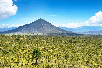 ?Viva Mexico! Collection - Desert Landscape in Puebla-Philippe Hugonnard-Photographic Print