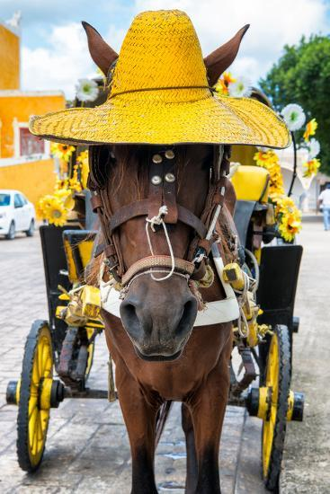 ?Viva Mexico! Collection - Horse with a straw Hat - Izamal Yellow City-Philippe Hugonnard-Photographic Print