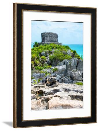 ¡Viva Mexico! Collection - Mayan Archaeological Site with Iguana III - Tulum-Philippe Hugonnard-Framed Photographic Print