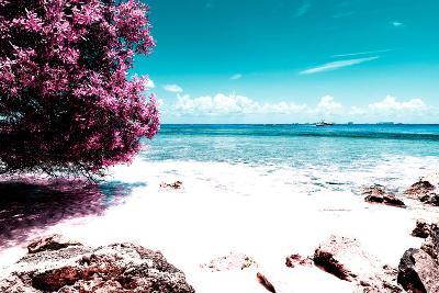 ¡Viva Mexico! Collection - Pink Caribbean Coastline - Isla Mujeres-Philippe Hugonnard-Photographic Print