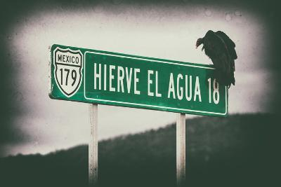 ¡Viva Mexico! Collection - Vulture II-Philippe Hugonnard-Photographic Print