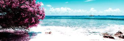 ¡Viva Mexico! Panoramic Collection - Caribbean Coastline II-Philippe Hugonnard-Photographic Print