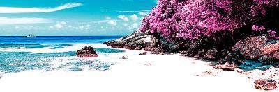 ¡Viva Mexico! Panoramic Collection - Caribbean Coastline VI-Philippe Hugonnard-Photographic Print