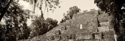 ¡Viva Mexico! Panoramic Collection - Pyramyd of the ancient Mayan City - Calakmul-Philippe Hugonnard-Photographic Print