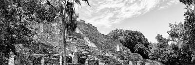 ¡Viva Mexico! Panoramic Collection - Pyramyd of the ancient Mayan City VII - Calakmul-Philippe Hugonnard-Photographic Print