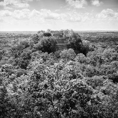 ¡Viva Mexico! Square Collection - Calakmul in the Mexican Jungle-Philippe Hugonnard-Photographic Print