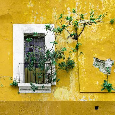 ¡Viva Mexico! Square Collection - Old Yellow Facade II-Philippe Hugonnard-Photographic Print