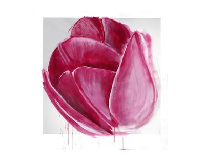 https://imgc.artprintimages.com/img/print/vivacious-tulip-bloom_u-l-f74pi20.jpg?p=0