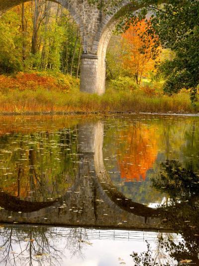 Vivarais Railway Stop and Bridge, Ardeche, France-Lisa S^ Engelbrecht-Photographic Print