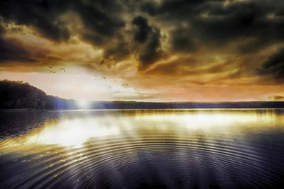Divine Light by Viviane Fedieu Daniel