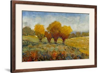 Vivid Brushstrokes I-Tim O'toole-Framed Photographic Print