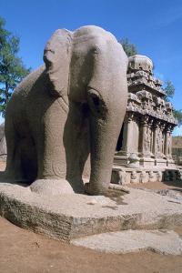 Carved Stone Elephant, Five Rathas, Mahabalipuram, Tamil Nadu, India by Vivienne Sharp