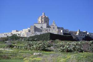 Mdina, Malta by Vivienne Sharp