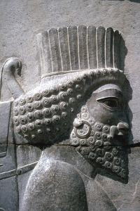 Relief of a Persian man, the Apadana, Persepolis, Iran by Vivienne Sharp