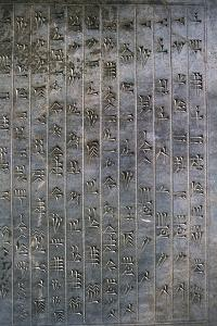 Relief of cuneiform text, the Apadana, Persepolis, Iran by Vivienne Sharp