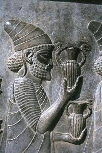 Relief of Syrians or Lydians, the Apadana, Persepolis, Iran by Vivienne Sharp