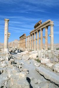 Upper Colonnade Street, Palmyra, Syria by Vivienne Sharp