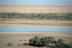 View of the River Tigris from the Ziggurat, Ashur, Iraq, 1977 by Vivienne Sharp