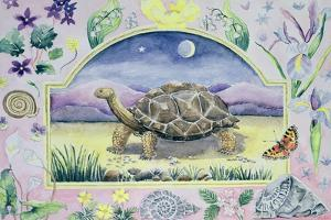 Giant Tortoise (Month of May from a Calendar) by Vivika Alexander