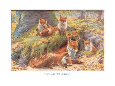 Vixen and Her Children, Illustration from 'Country Ways and Country Days'-Louis Fairfax Muckley-Giclee Print