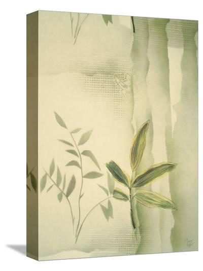 Vizcaya Ferns II-Muriel Verger-Stretched Canvas Print