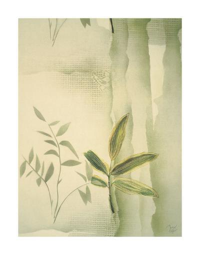 Vizcaya Ferns II-Muriel Verger-Art Print