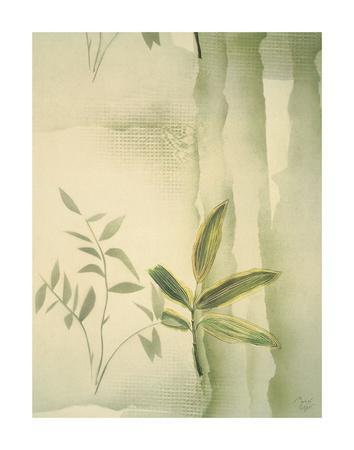 https://imgc.artprintimages.com/img/print/vizcaya-ferns-ii_u-l-f8cq100.jpg?p=0