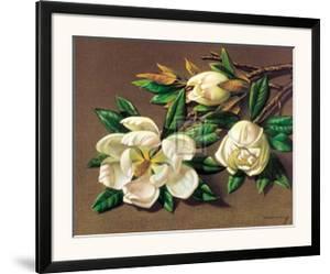 Magnolias by Vladimir Tretchikoff