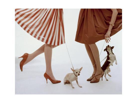 Vogue - February 1959 - Pumps and Pups-William Bell-Premium Photographic Print