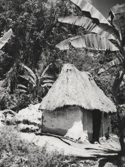 Vogue - November 1935-Cecil Beaton-Premium Photographic Print