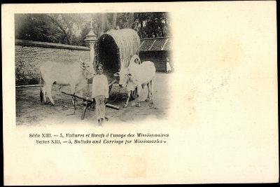 Voitures Et Boeufs a L'Usage Des Missionnaires, Bulloks, Carriage, Ochsen--Giclee Print