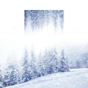 Beautiful Winter Landscape with Snow Covered Trees - Geometric Reflections Effect by Volodymyr Burdiak