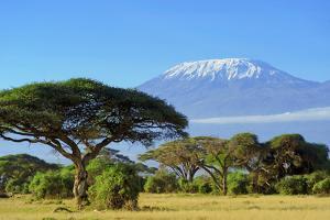 Snow on Top of Mount Kilimanjaro in Amboseli by Volodymyr Burdiak