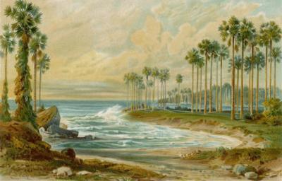 Palmyra Palms Provide Little Shade on a Sri Lanka Beach by Von Konigsbrunn