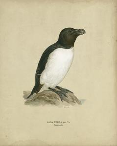 Antique Penguin I by Von Wright