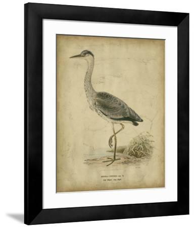 Vintage Heron II