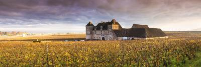 Vougeot Castle and Vineyards, Burgundy, France-Matteo Colombo-Photographic Print