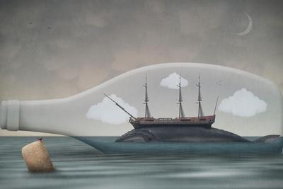 https://imgc.artprintimages.com/img/print/voyage-in-a-bottle_u-l-q1c0y1y0.jpg?p=0