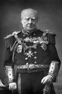 Admiral of the Fleet Sir Henry Keppel (1809-190), 1893 by W&d Downey