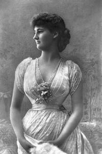 The Duchess of Leinster, 1890 by W&d Downey