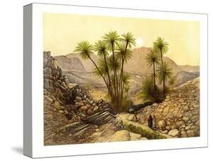 The Desert of Sinai, Egypt, C1870 by W Dickens