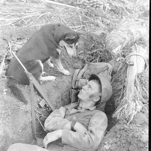 U.S. Marine in a Foxhole with War Scouting Husky Dog During the Landing of Guam, August 1944 by W. Eugene Smith