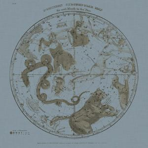 Northern Circumpolar Map by W^G^ Evans