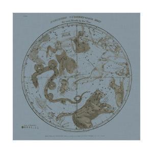 Northern Circumpolar Map by W.G. Evans