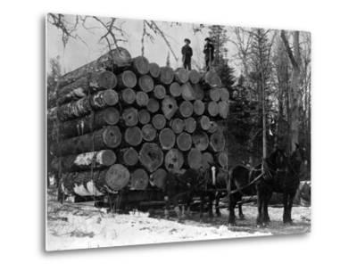 Horses Hauling Huge Load of Logs