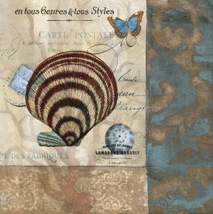 Botticelli Shell II by W. Green-Aldridge