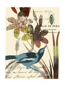 Exotic Blossom I by W. Green-Aldridge